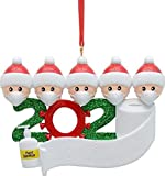 Shell-Tell Christmas Tree Ornaments kit with Mask for 2020 Quarantine Survivor 1-7 People Family Creative Gift for Family Christmas Decorating (D5) (Unknown Binding)