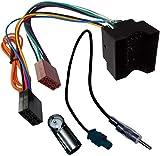 Aerzetix - Câble Adaptateur Faisceau autoradio et antenne