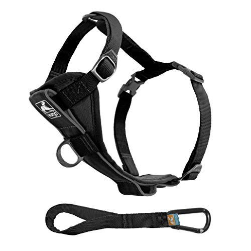 Kurgo Dog Harness | Pet Walking Harness | Medium | Black | No Pull Harness Front Clip Feature for Training Included | Car Seat Belt | Tru-Fit Quick Release Style