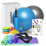 nononfish Long Resistance Bands with Handles Set Non Latex Elastic Skin Friendly Plus Exercise Ball 9 inch and Hand Therapy Ball for Home Workout, Rehab, Stretching