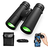 TONDOZEN 10X42 Compact Binoculars for Adults, BAK-4 Roof Prism High Power HD Binoculars for Bird Watching,Theater and Concerts,Hunting and Sport Games with Phone Mount Strap Carrying Bag