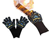 BlueFire Gloves BBQ Grill...