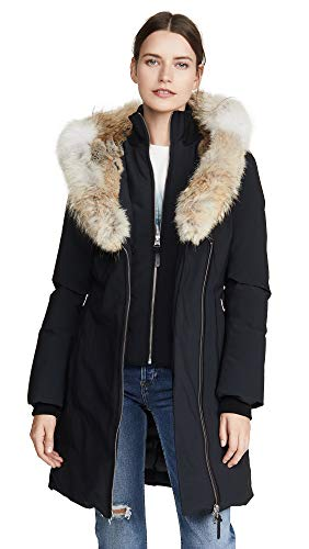 41y+2mFsC9L Fitted silhouette Asiatic raccoon fur trimmed collar