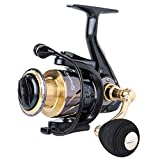 Sougayilang Spinning Reels Fishing Reel with 13 +1 Corrosion Resistant Ball Bearings, W-Ship Gearing, Silent Drive, SXS Braking System and Free Spare Graphite Spool for Angler(EC-4000)