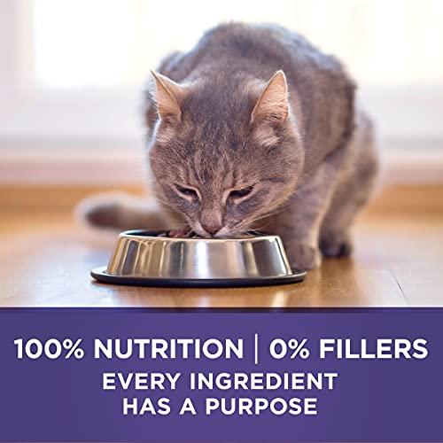 Product Image 9: Purina ONE Natural Dry Cat Food, Hairball Formula - 22 lb. Bag