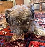 ROQSY Natur-Dörrfleisch 100% Ziege Jerky Kaufleisch Hundesnack Kaustreifen Leckerli Kaustangen schonend getrocknet 100g - 2