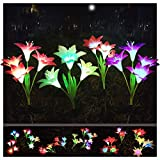 Solar Flower Light...image