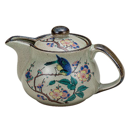 Kutani pottery teapot pot flowers and birds (with tea strainer)