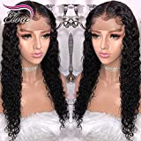 Full Lace Brazilian Remy Human Hair Wig 150 Density Pre-Plucked Hairline Full Lace Front Human Hair Wig Curly Hair Wig for Black Women (14 inch full lace wig, 150 Density)