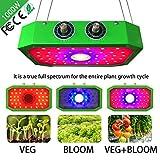 COB 1000W LED Horticole Lampe, Lampe de Croissance des Plantes à Spectre...