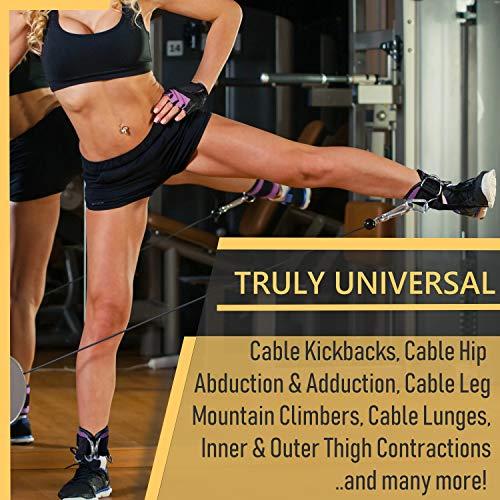 51 gPdFC5L - Home Fitness Guru