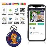 QR4G.com GPS Plaque d'identification intelligente pour animaux de...