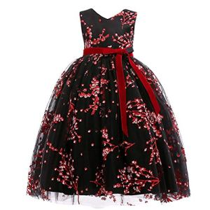 USEMPER Princess Girls Dress for Wedding Birthday Party with Train Size 3-14 Years