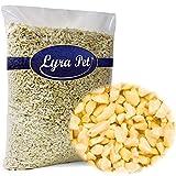 Lyra Pet 10 kg Erdnusskerne weiss blanchiert gehackt Erdnüsse Nüsse Vogelfutter