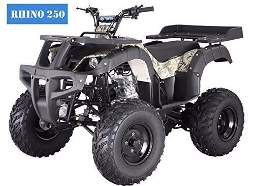 BRAND New Adult Size 250 Adult Size ATV with standard manual clutch and reverse - Choose your color