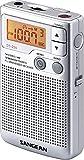 Sangean DT-250 Radio digitale stéréo AM / FM Haut-parleur intégré Horloge...