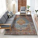 Vintage Bohemian Traditional Style Persian Oriental Medallion Design Living Dining Room Bedroom Area Rug (4 x 6, Aqua/Fushia Antalya)