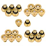 Aootech Brass Misting Nozzles for Outdoor Cooling System 22 pcs,0.012' Orifice (0.3 mm) 10/24 UNC