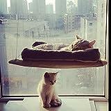 Hamac Wiseminnie 20kg pour chat, lit de chat avec coussin...