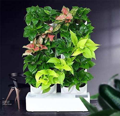 ZHANGRONG LED Pflanzenleuchte Indoor-Grünpflanzen Blühen Hydroponische Pflanzen Mini Pflanzenwand LED-Vollspektrum-Wachstumslampe Zweireihige Mini-Pflanzenwand Intelligente Hydroponik (Model : B)