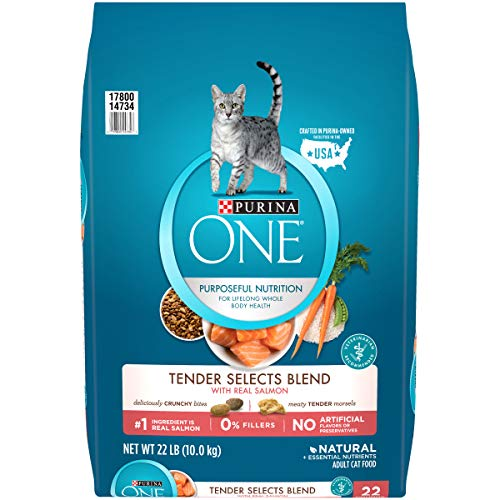 Product Image 1: Purina ONE Natural Dry Cat Food, Tender Selects Blend With Real Salmon - 22 lb. Bag