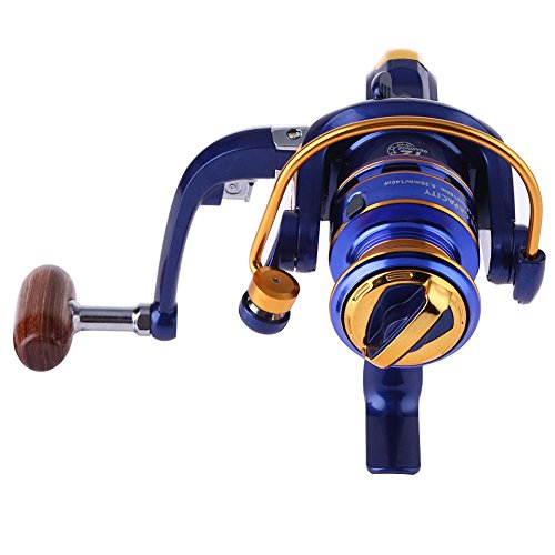 Starnearby STAR Earby Mulinello spinnrollen 12BB Cuscinetti a sfera 5,2: 1100MT IN METALLO Mare Pesca Spinning Reel Spool Tackle, FH5000, 119.00 * 117.00 * 75.00