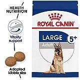 Royal Canin Large Adult 5+ Dry Dog Food for Older Dogs, 30 lb. bag