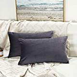 JUSPURBET Decorative Lumbar Pillow Covers,Pack of 2 Velvet Throw Pillow Covers for Couch Bed Sofa,Soild Soft Pillow Cases,16x24 Inches,Purple Gray