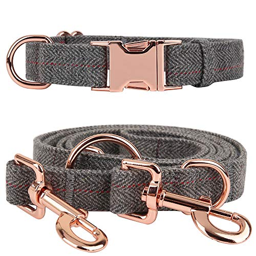 Medium-Large Big-Female Heavy-Duty Dog-Collar Leash-Set - Rose Gold 6 Foot Exceptionally Elegant Design and Adjustable in 3 Different Lengths for Medium to Large Dogs (Grey,M)
