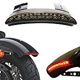 ANKIA Motorcycle Chopped Rear Fender Edge LED Brake License Plate Tail Light Stop Running Light Turn Signal Lamp for Harley Sportster XL883N 1200N XL1200V XL1200X (Smoked Black)