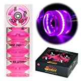 Sunset Skateboard Co. 65mm 78a LED Light-Up Longboard Wheels (4-Pack) with ABEC-7 Carbon Steel Bearings for Glow-in-The-Dark, All Ages & Skill Levels Skating Fun with No Batteries Required (Pink)