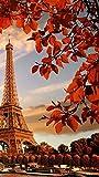 Pintar por numeros Adultos,Torre Eiffel 40x60cm,Pintar con Numeros para Adultos Niños Principiantes sobre Lienzo decoración Decoraciones Regalos