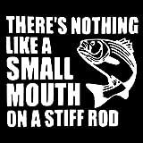 WBXZY 15,7 CM * 13,1 CM no Hay Nada como una Boca pequeña en una caña rígida Etiqueta de Cita de Pesca Pegatina de Vinilo para Coche Negro/Plateado C24-0497-Plata