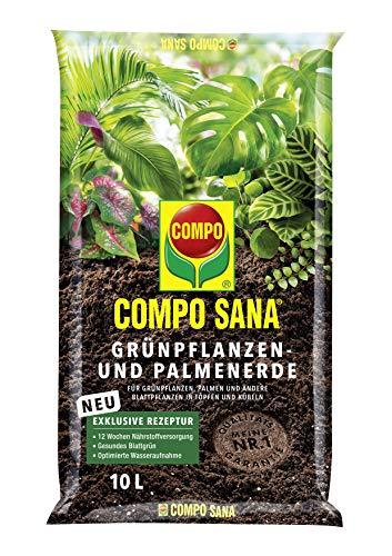 Compo Verdure 1143102004 Sana e Palm Terra, 10L