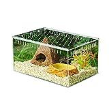 HangaroneBoîte Transparente d'élevage de Reptiles, boîte de Vivarium en Verre, boîte d'alimentation de...