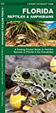 A Pocket Naturalist Guide Florida Reptiles & Amphibians: A Folding Pocket Guide to...