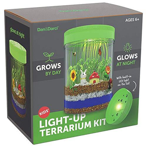 Light-Up Terrarium Kit for Kids - STEM Activities Science Craft Kits -...