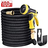 Delxo 100FT Expandable Garden Hose Water Hose with 9-Function High-Pressure Spray Nozzle,Black Heavy Duty Flexible Hose, 3/4' Solid Brass Fittings Leakproof Design (Black)