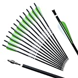 REEGOX 20 inch Crossbow Bolts Bio with 4-Inch Vanes(Pack of 12) Green…