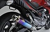リアライズ(Realize) Aria スリップオンマフラー SUZUKI GSR250 [ JBK-GJ55D ] チタン TypeC カールエンド509-SO-001-01