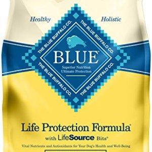 Blue Buffalo Life Protection Formula Natural Adult Healthy Weight Dry Dog Food 6