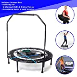 Maximus PRO Folding Rebounder | Voted #1 Indoor Exercise Mini...