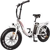DJ Folding Bike Step Thru 750W 48V 13Ah Power Electric Bicycle, Pearl White, LED Bike Light,...