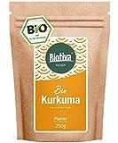 Polvere di curcuma biologica (250g) - radice di curcuma macinata di alta qualità (curcuma) - curcumina - sacchetto fresco richiudibile - imbottigliato in Germania (DE-ÖKO-005)