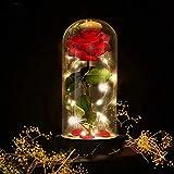 E-MANIS Die Schöne und das Biest Rose Geschenk Kit Glaskuppel Künstlich Rose Lampe Holzsockel LED-Licht der Rose Haus Dekoration für Geschenk Valentinstag Muttertag Weihnachtstag Geburtstag