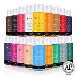 Lots de 18 flacons de peinture acrylique Color Technik 59 ml Les meilleures couleurs pour la peinture sur toile, bois, argile, tissu, Nail Art et céramique - Chargée de pigments -Coffret cadeau inclus