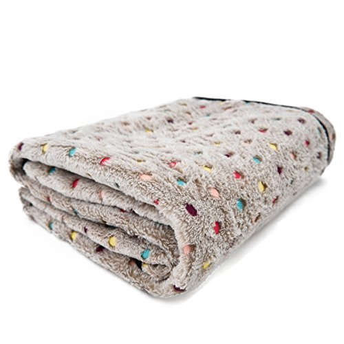 4. PAWZ Road Pet Dog Blanket