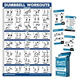 QuickFit 2 Pack - Dumbbell Workout Poster - Laminated 18' x 27' & Bodyweight Exercise Card Set - 2.5' x 3.5'