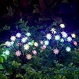 TONULAX Solar Garden...image