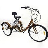 Mini One Vélo tricycle pour adulte avec 3 roues pour adultes, vélo à 6...